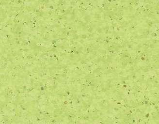 0338 Kiwi